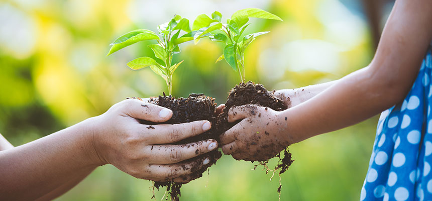 Environmental Sustainability for SMEs
