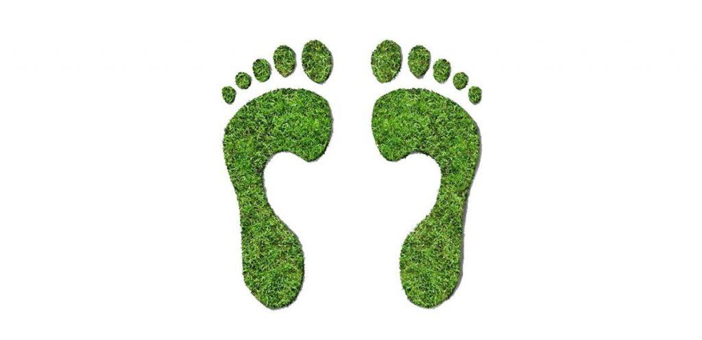 environmental sus 4